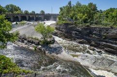 Baksida för gödsvin` s parkerar och vattenfall 3 Arkivfoto