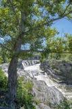 Baksida för gödsvin` s parkerar och vattenfall 10 Royaltyfria Bilder