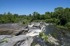 Baksida för gödsvin` s parkerar och vattenfall 19 Arkivbild