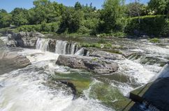 Baksida för gödsvin` s parkerar och vattenfall 37 Arkivbild