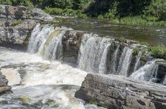 Baksida för gödsvin` s parkerar och vattenfall 24 Arkivfoton