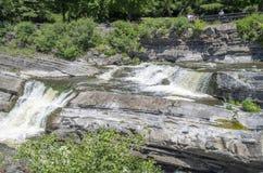 Baksida för gödsvin` s parkerar och vattenfall 34 Arkivfoto