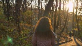 Baksida-sikten ståenden av den unga caucasian lockig-haired kvinnan som går i soligt höstligt, parkerar arkivfilmer