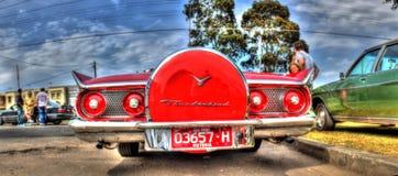 baksidaavsnitt för 195Os Ford Thunderbird Arkivfoto