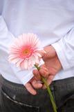 baksidt bak blomma hans holdingman Arkivfoto