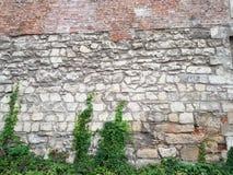 Baksteen en metselwerk middeleeuwse muren in Lviv op Mytnaya-Vierkant Monument van architectuur van de Oekraïne onder de bescherm royalty-vrije stock foto's
