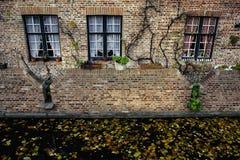 Baksteenhuis met drie vensters en kanaal vóór het met dalende bladeren, Brugge, België Stock Fotografie