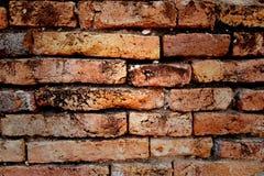 Bakstenen muren Stock Foto
