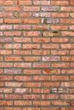 Bakstenen muur Stock Foto