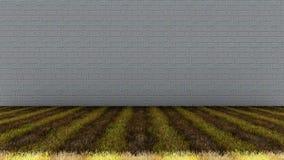 Bakstenen muur in Achtergrond en Grasrijke Vloer Royalty-vrije Stock Fotografie