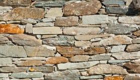 bakstenen muur en bloem Stock Afbeeldingen
