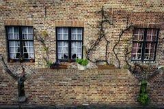 Bakstenen muur met drie vensters in Brugge, België Stock Afbeeldingen