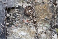 Bakstenen muur met lagen van doorstane gipspleister Stock Fotografie
