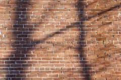 Bakstenen muur met schaduwen Royalty-vrije Stock Foto's