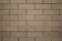 Bakstenen muur Rode Morter Stock Fotografie