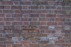 Bakstenen muur van Historische Burgeroorlog Fort4 royalty-vrije stock foto's