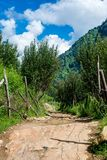 Bakstenenweg en off-road in Himalayagebergte, India royalty-vrije stock foto