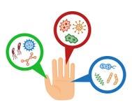 Bakterie, drobnoustrój pod magnifier ilustracji