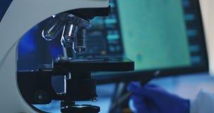 Bakterie pobieraj? pr?bki egzamininuj? z mikroskopem zdjęcie wideo