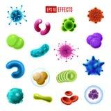 Bakterieceller, bakterier och virus microorganisms royaltyfri illustrationer