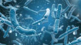 bakteriecloseup för tolkning 3D i blå bakgrund royaltyfri illustrationer