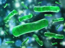 Bakterienärbild microbes Arkivbild