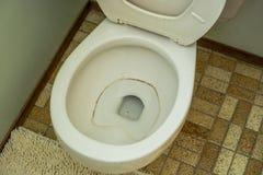 Bakterien in der Toilettenschüssel Stockfotos