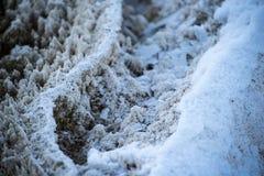 Bakterien-Muster - Yellowstone im Winter Lizenzfreie Stockfotografie