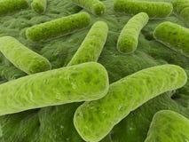bakterier stock illustrationer
