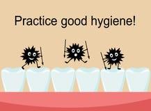 Bakterier anfaller tänderna och spolierar dem Arkivbilder