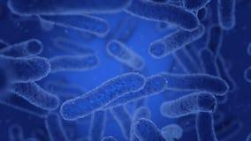 Bakterier i blått flyttar sig vektor illustrationer