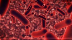 Bakterievirus under mikroskopet Vektor Illustrationer