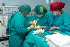 Baku, Azerbaijan Mai 2016 Operationsteam, das Chirurgieoperation, Kaiserschnitt durchführt Gynäkologen und Hebammen, die entbinde Lizenzfreie Stockfotografie