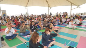 Baku, Azerbaijan, may 15, 2017: Men and women yoga classes during the festival Day of yoga stock footage