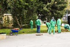 Baku Azerbajdzjan-April 16, 2018 trädgårdsmästare gräver rabatter i parkerar upp, arbetare som arbetar i, parkerar, folk på arbet royaltyfri foto