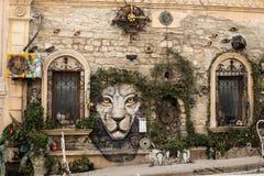 Baku Azerbajdzjan gammal stad garnering för träd för växt för gatakonstvägg tigerframsidabild royaltyfri fotografi