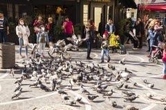 BAKU, AZERBAYJAN-03 MAY 2017: Ludzie karmi domowych gołębie w ulicie Fotografia Stock