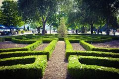Baku embankment, green plants Royalty Free Stock Photography