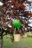 Balão com uma cesta Fotos de Stock Royalty Free