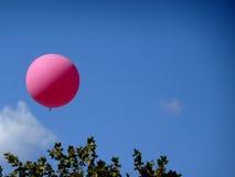 Balão cor-de-rosa Fotografia de Stock