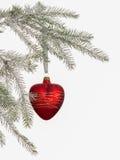 Balão dado forma coração Fotos de Stock Royalty Free
