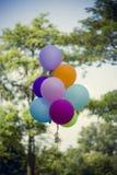 Balão das felicitações Fotografia de Stock Royalty Free