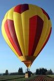 Balão de ar quente sobre o campo de flor Fotografia de Stock