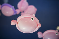 Balão dos peixes Imagem de Stock