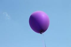 Balão roxo Imagens de Stock