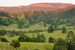Balénoptère de Mt Images libres de droits