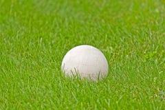 Balón de fútbol blanco en hierba verde Imagen de archivo libre de regalías