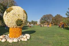 Balón de fútbol de la calabaza Imágenes de archivo libres de regalías