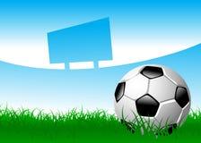 Balón de fútbol en campo de hierba Foto de archivo