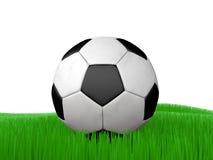 Balón de fútbol en fútbol de la hierba Foto de archivo libre de regalías